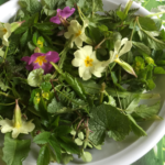 Wildkräuter-Frühlingssalat
