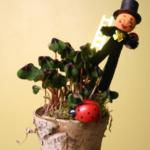 Deko-Tipps zum Jahreswechsel