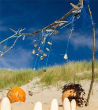Strandgut aus der Nordsee
