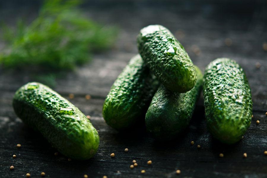 Kleine grüne Essig-Gurken