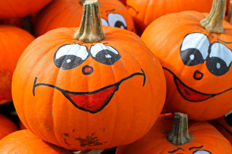 Kürbis als Deko zum Halloween
