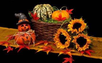 Kürbis eignet sich für Deko zum Halloween