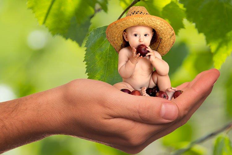 Hand mit kleinem, essenden Kind (Zwergen): Eigenverantwortung hilft gegen Fresssucht