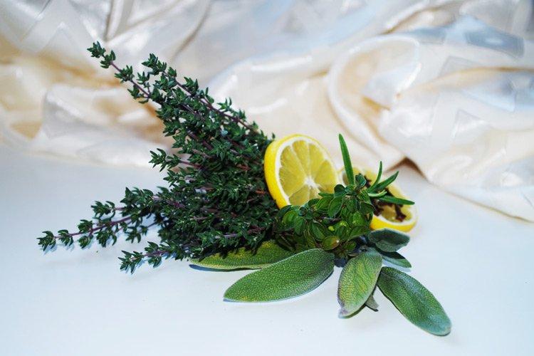 Zitronenthymian ist ein ideales Küchengewürzkrau