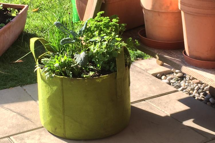 Sackgesund-Pflanzentaschen