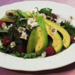 Salat der nach Frühling schmeckt