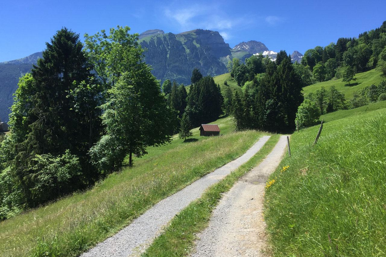 Schotterstrasse in den Bergen: Dranbleiben auch bei Höhen und Tiefen