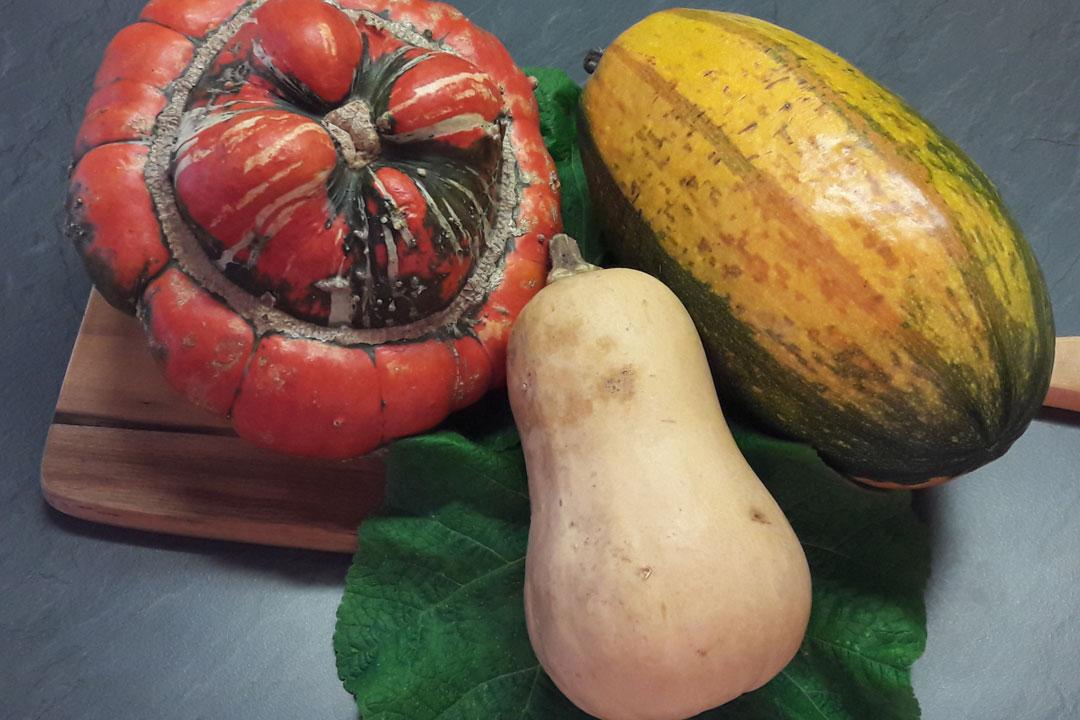Drei Kürbisse aus der lokalen Ernte
