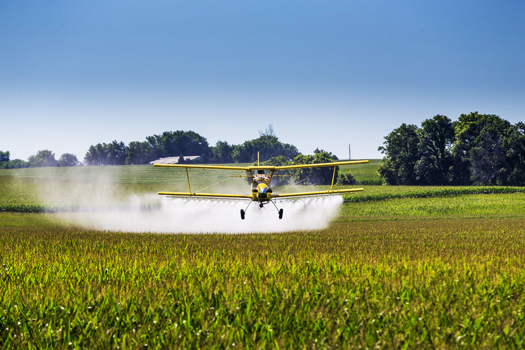 Flugzeug versprüht Pflanzengift über Feld
