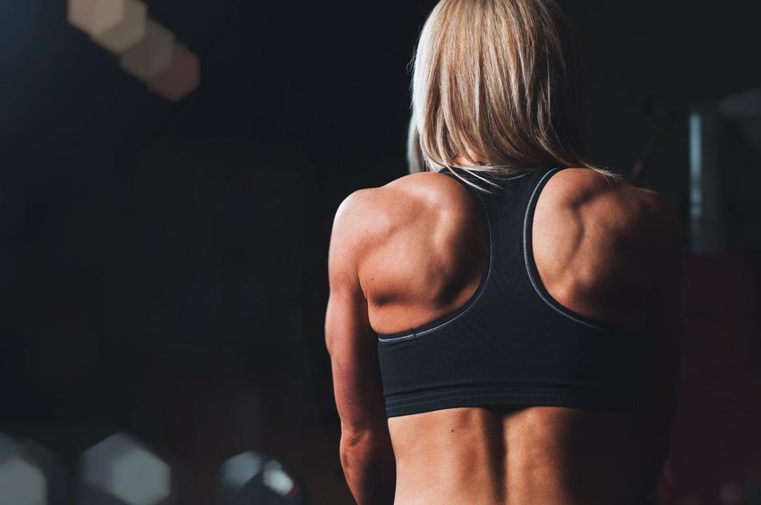 Der Motor des Körpers: Mit Krafttraining zu mehr Muskeln und Gesundheit