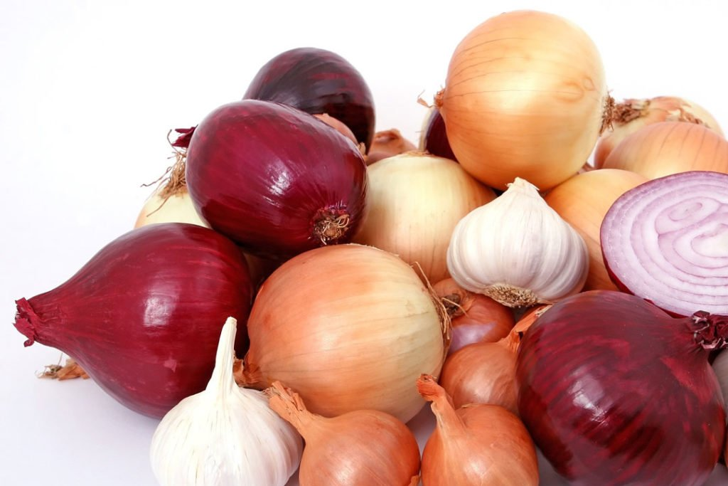 Verschiedene Zwiebeln die als Heilmittel eingesetzt werden können.