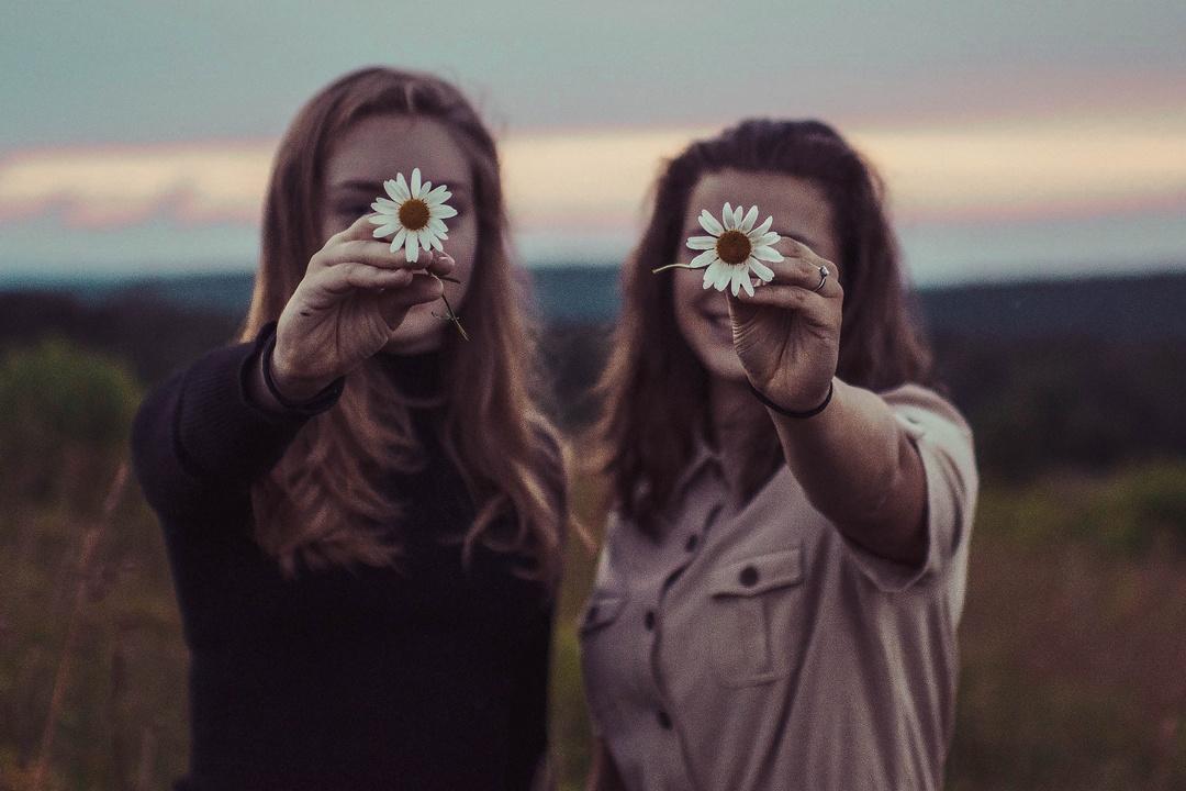 Das Gänseblümchen zaubert ein Lächeln ins Gesicht