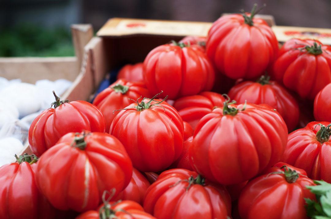 Erntefrische Tomaten auf dem Markt