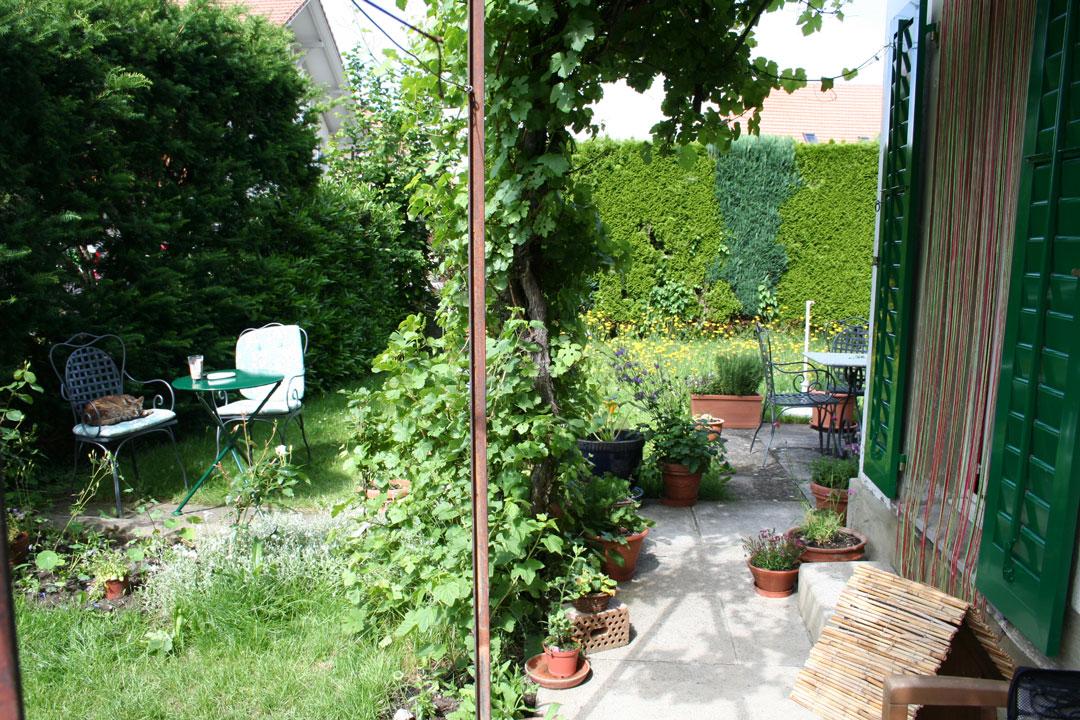 Mit Hecken und vertikaler Begrünung wurde auf kleinstem Raum ein grünes Paradies geschaffen.