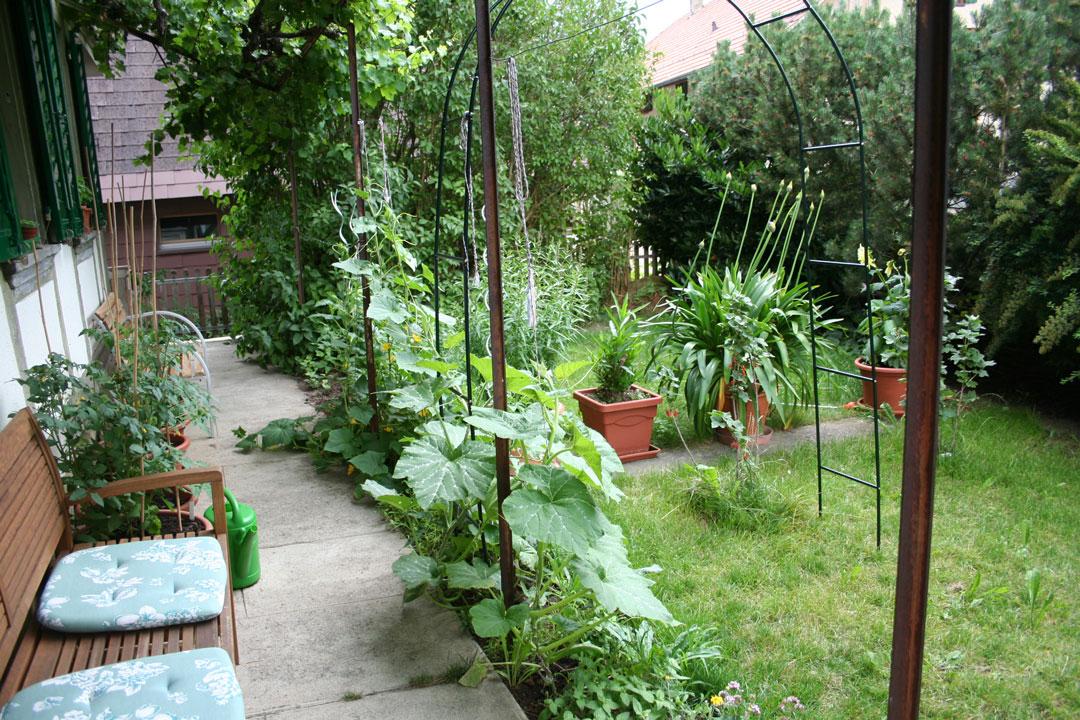 Gemütliche Sitzplatz im Garten, umrahmt von verschiedenen Pflanzen.