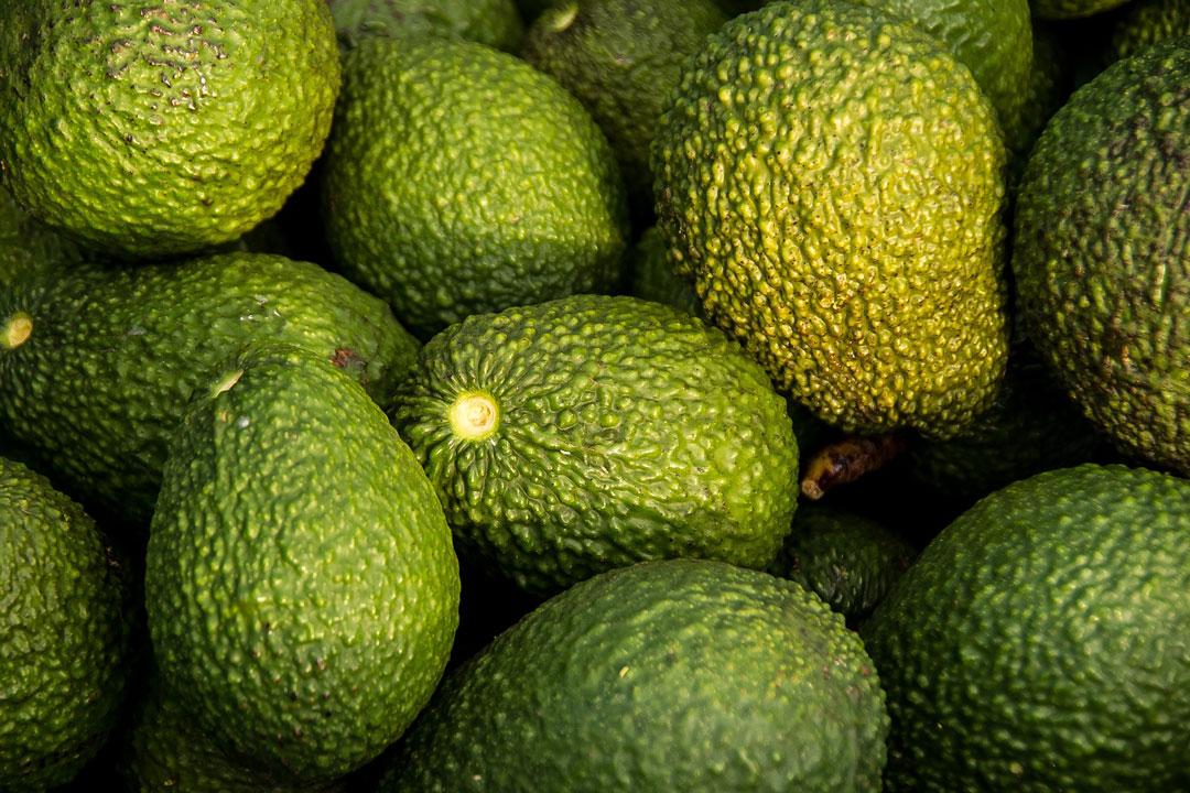 Avocados in verschiedenen Grössen und Formen