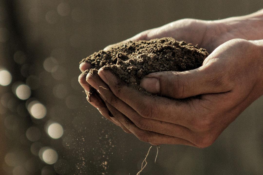 Eine handvoll Gartenerde, die aus Kompost gewonnen wurde