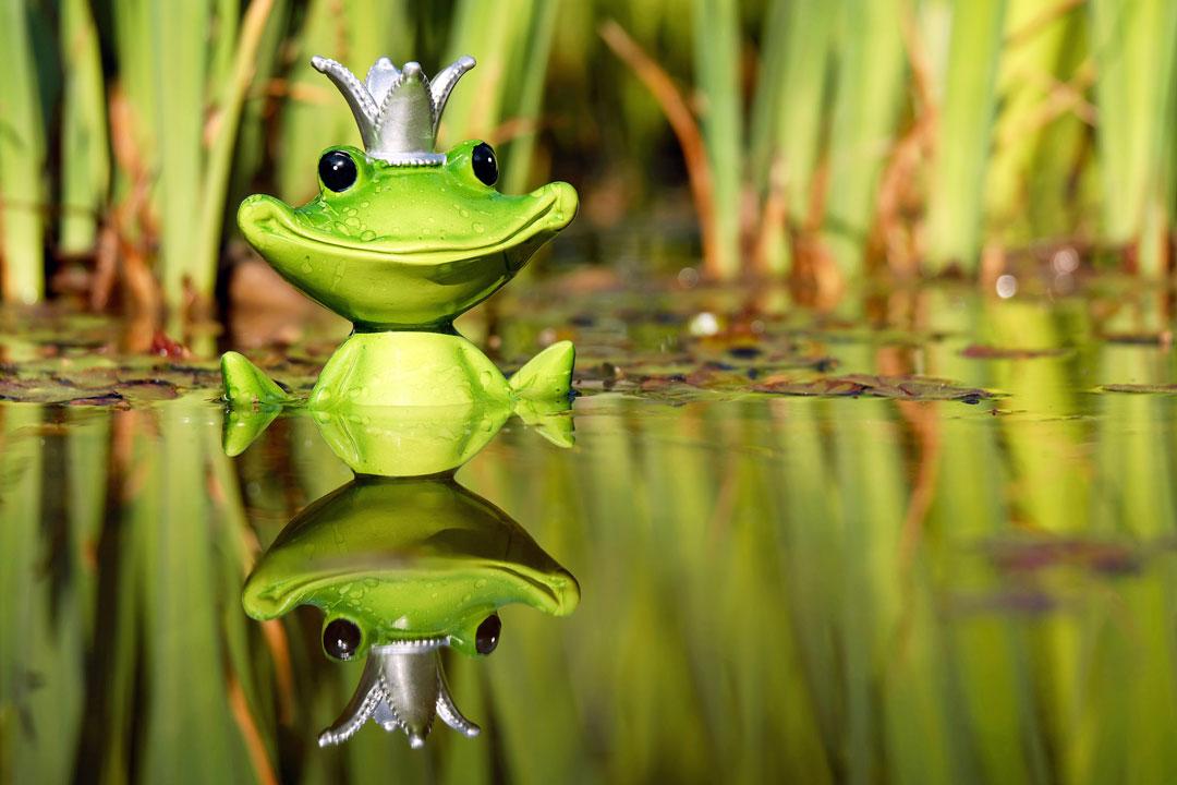 Deko-Figur Froschkönig im Gartenteich