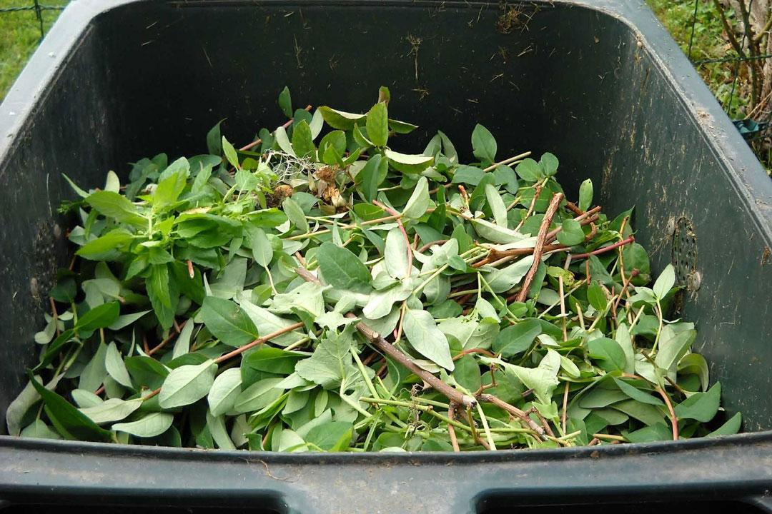Geschlossener Kompostbehälter im Garten