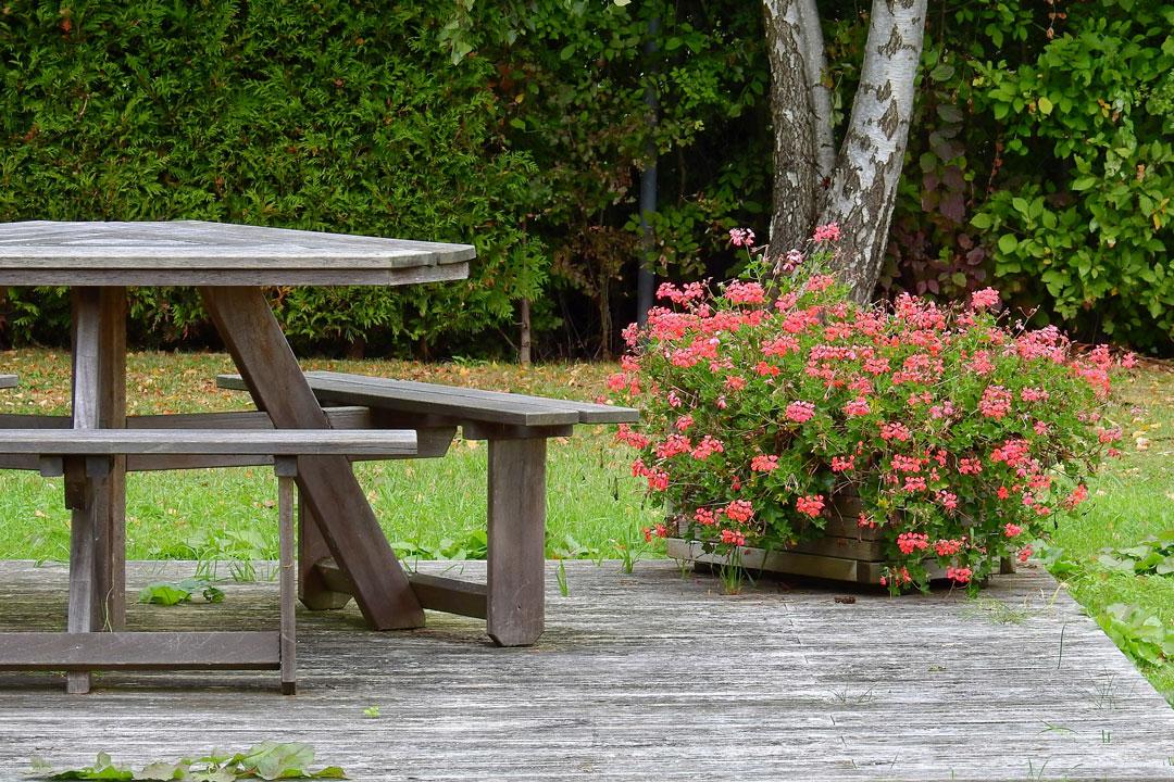 Sitzgelegeit am Gartenteichenh