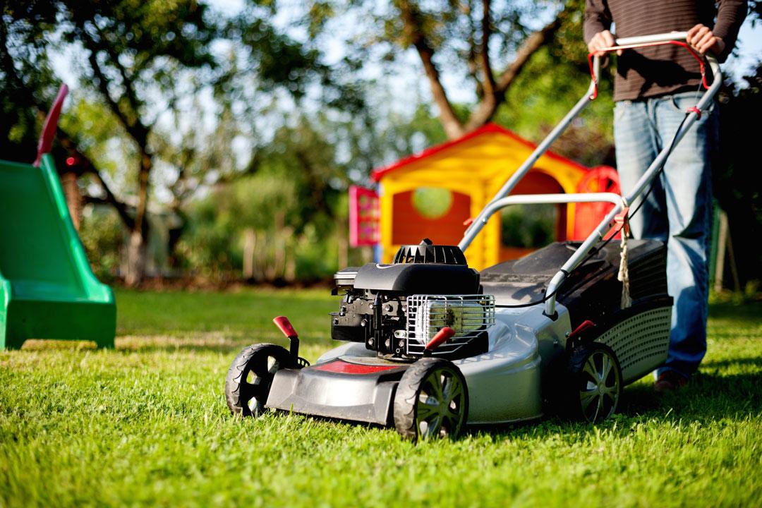 Mit dem Rasenmäher die Grünfläche schneiden und pflegen