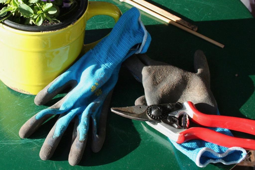 Handschuhe und Gartenschere für den Herbstschnitt