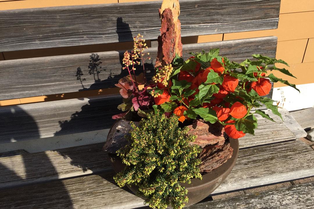 Herbstlich dekorierte Pflanzschale aiuf einer Sitzbank