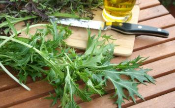 Altbewährte Wintersalate - erntefrisch vom Garten auf den Teller