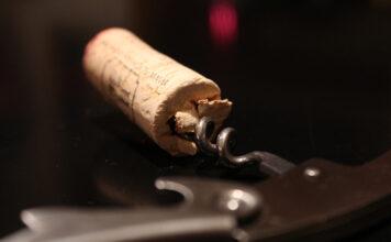 Grundkurs Wein: Basiswissen über den Nektar der Götter