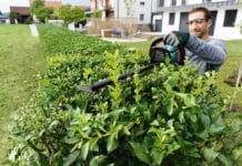 Keine Rückenschmerzen bei der Gartenarbeit