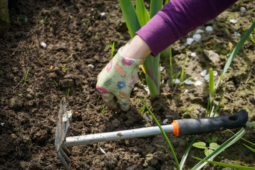 Das Jäten von Unkraut zählt bei der Gartenarbeit zu den eher unliebsamen Aufgaben.