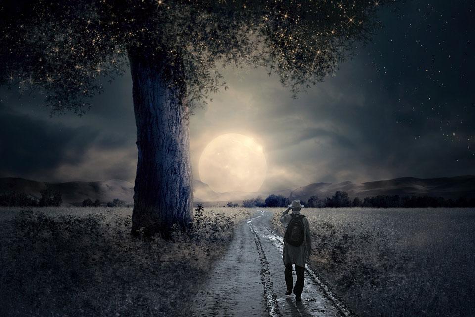 Ein Mann läuft in einer Vollmondnacht auf einem Feldweg neben Wiesen mit Heilpflanzen.