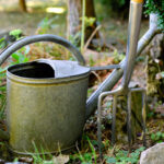 Giesskanne und Gartengabel im Garten