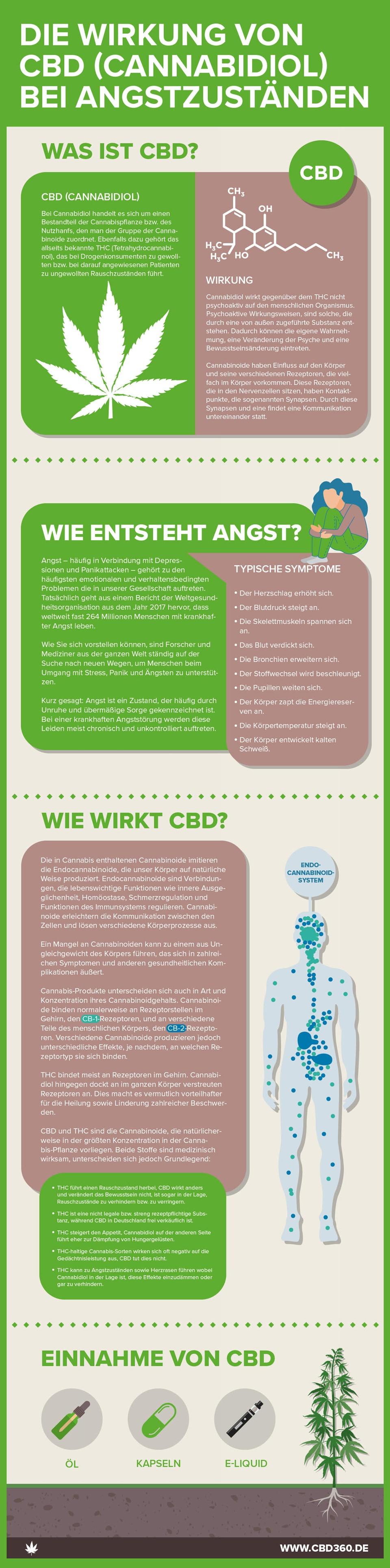 Infografik: Wie CBD bei Angststörungen hilft