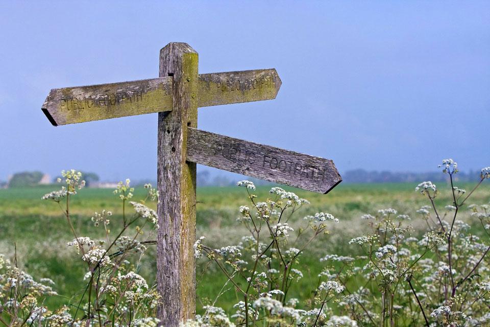 """Wegweiser auf einem grünen Feld als Synonym für """"Viele Wege führen zu mehr Gelassenheit""""."""