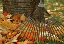 Ein Laubrechen für die Gartenarbeiten im Herbst