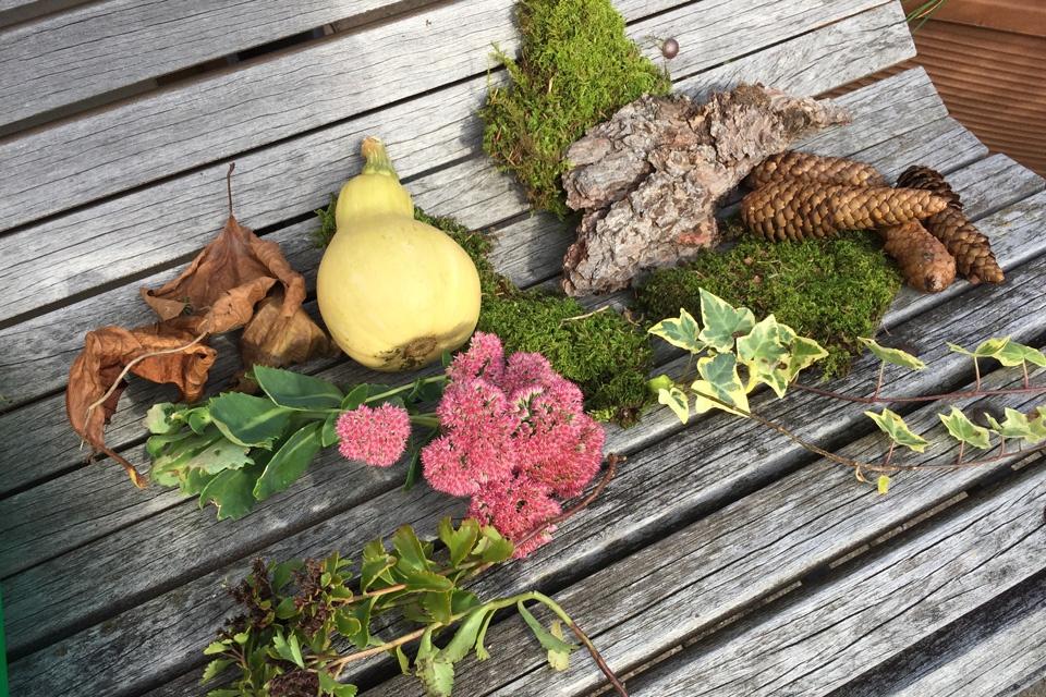Moos, Zweige und dekorative Steine finden Sie am besten bei einem erholsamen Spaziergang im Wald.