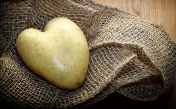 Eine Kartoffel in Herzform als Gesundheitshelfer