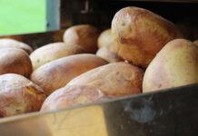 Die Kartoffelknolle wird im Ofen zu Baked Potato voerbereitet
