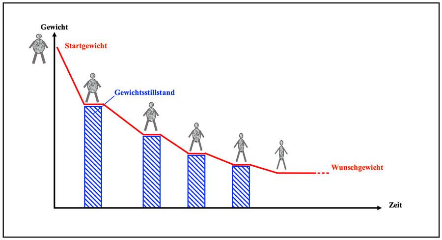 Grafische Darstellung wie sich Gewichtsstillstand entwickelt