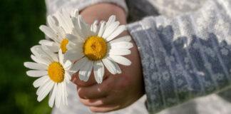 Gesundheit schenken in Form von Blumen