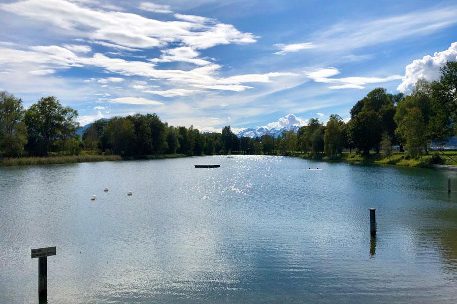 Blick auf einen Baggersee im Sommer