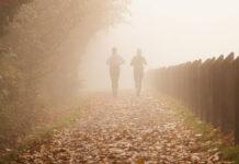 2 Frauen laufen an einem herbstlichen Tag