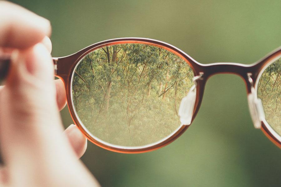 Blick ins Grüne durch ein Brillenglas