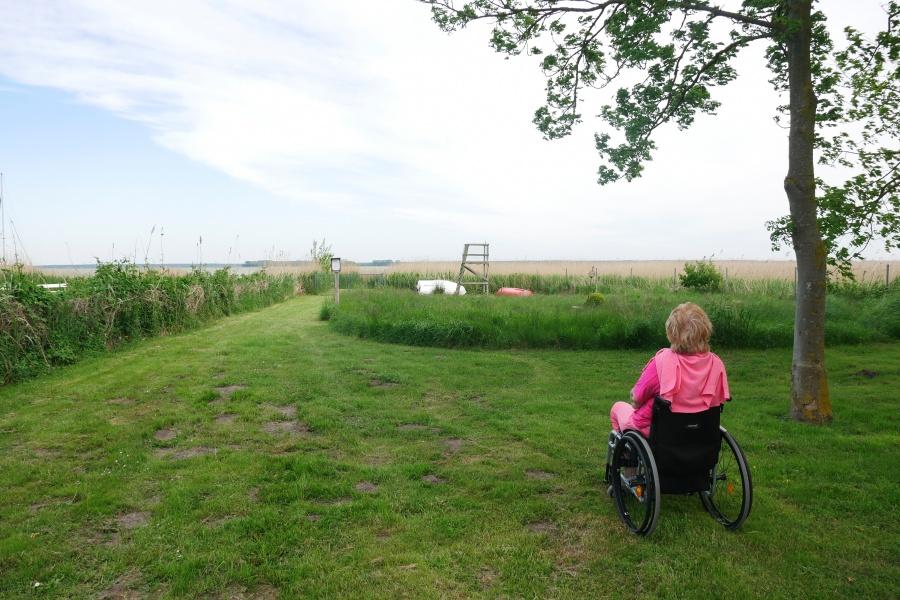 Frau mit Rollstuhl auf einer Wiese blickt in die Ferne