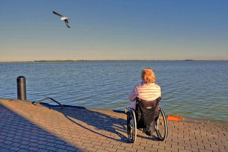 Frau im Rollstuhl beobachtet in der Abenddämmerung eine Möwe am Strand