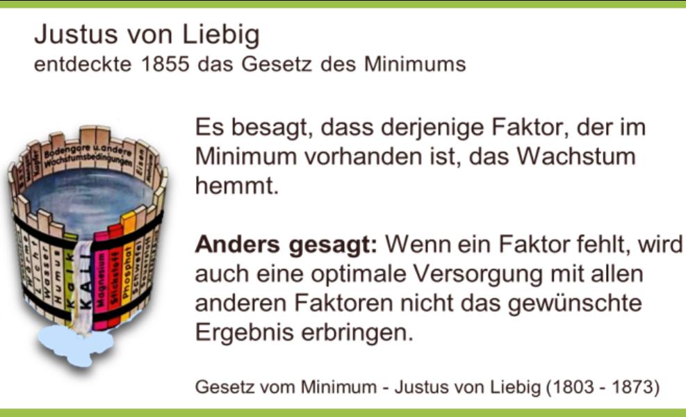 Das Gesetz des Minimums von Justus von Liebig